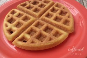 Coconut Flour Waffles for Special Diets