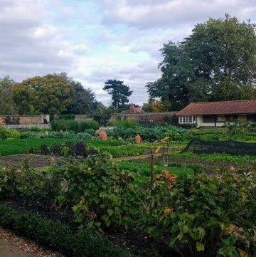 royal kitchen garden