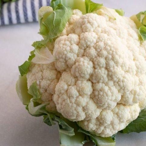 head of cauliflower