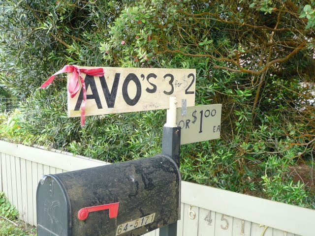 avocado roadside sign by a black mailbox - the best local food in Hawaii!